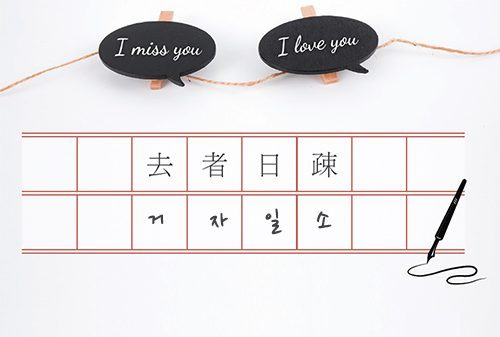 [Mr.Park의 사교성] 거자일소[去者日疎]의 마음으로 그리움을 거닐다
